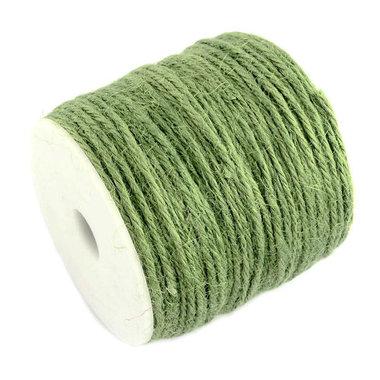 100 meter Hennep touw groen 2 mm dikte