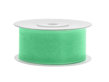 Organza lint 38 mm mint